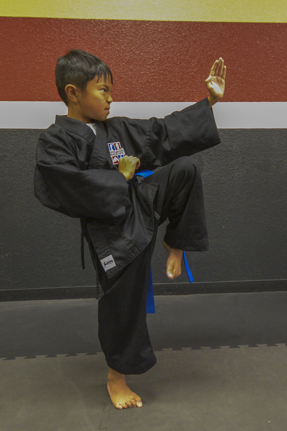 Kenpo Karate - Benicia Boxing and Martial Arts